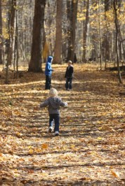 Nature Hikes with the kids are a great free activity with kids. Enjoy a fun day out exploring nature with the whole family.