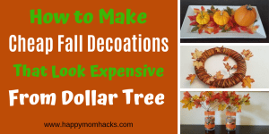 10 Cool DIY Fall Decorations ideas from Dollar Tree. You'll love these cheap & easy crafts for Thanksgiving and Halloween. Save money while making your house look cute for the Holidays. #fall #decorations #thanksgiving #halloween #falldecor #dollartree