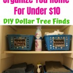 17 Genius Dollar Tree Diy Organization Hacks Happy Mom Hacks