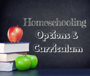 Homeschooling curriculum and options for beginners.