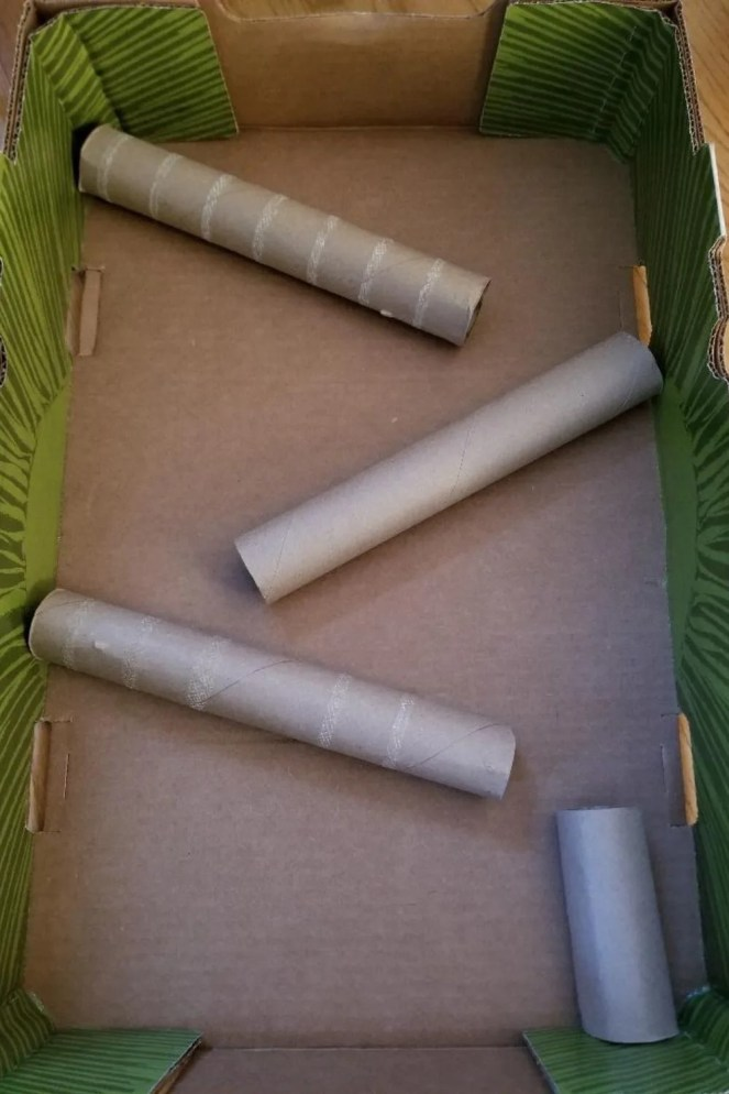 Layout your cardboard tubes to create your Marble Run before gluing.