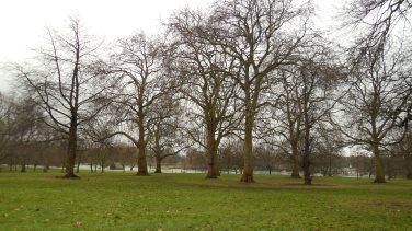 Londres - Hyde Park1