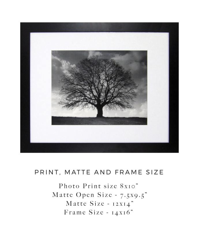 frame matte and print