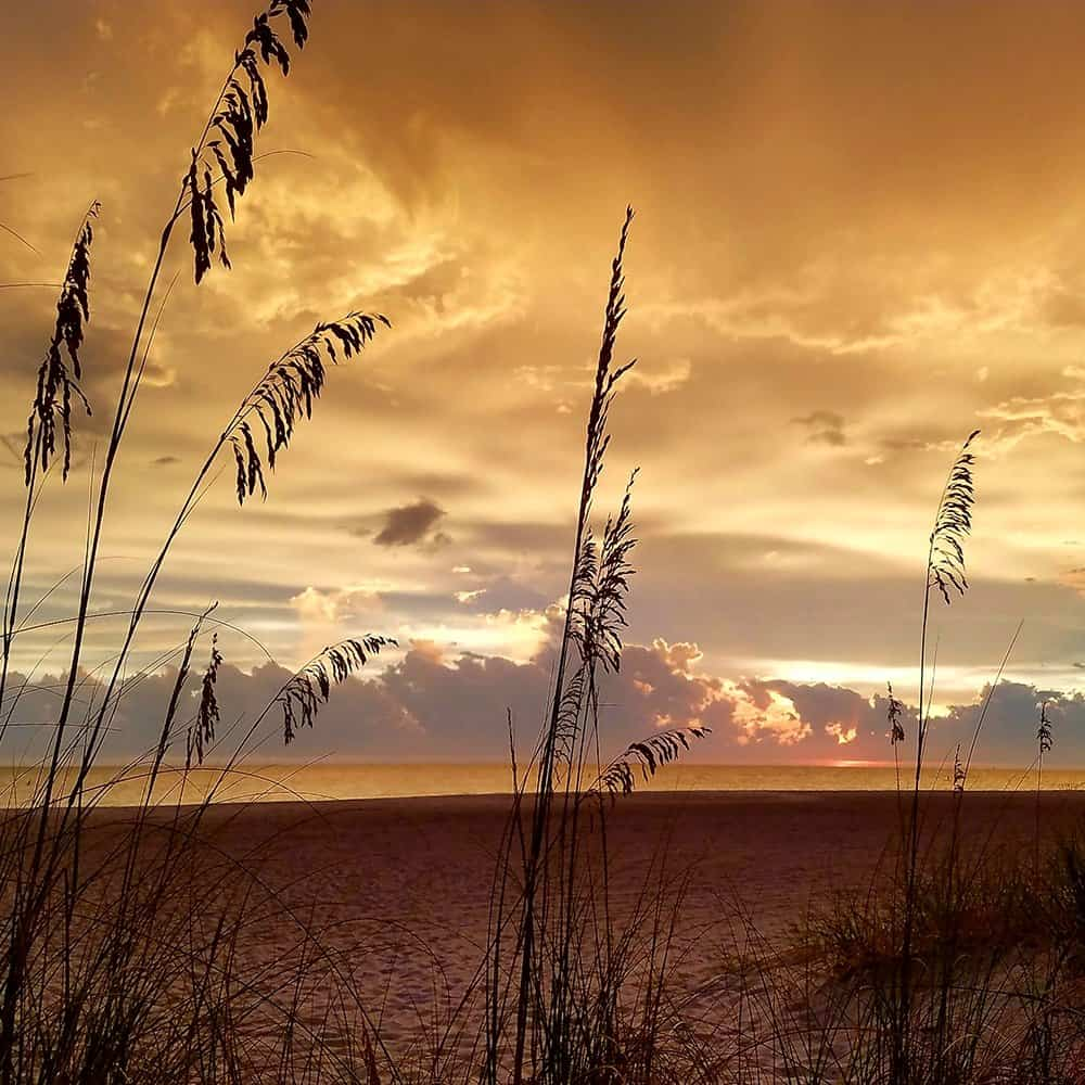 Sunset with orange clouds and sea oats