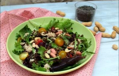 salade de thon aux lentilles vertes et cacahuètes