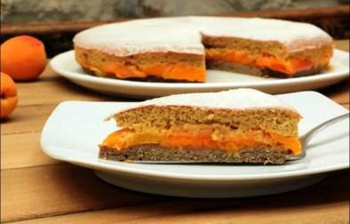 gâteau aux abricots à l'anglaise sans gluten et sans lactose
