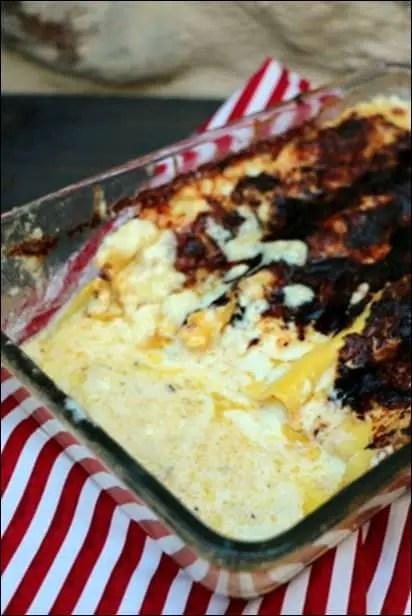 lasagnes gorgonzola ricotta mozzarella