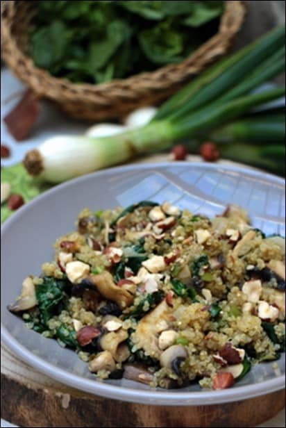 quinoa pousse epinard
