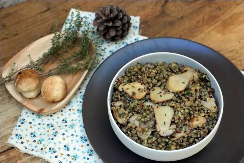salade lentilles quinoa cepes cuits