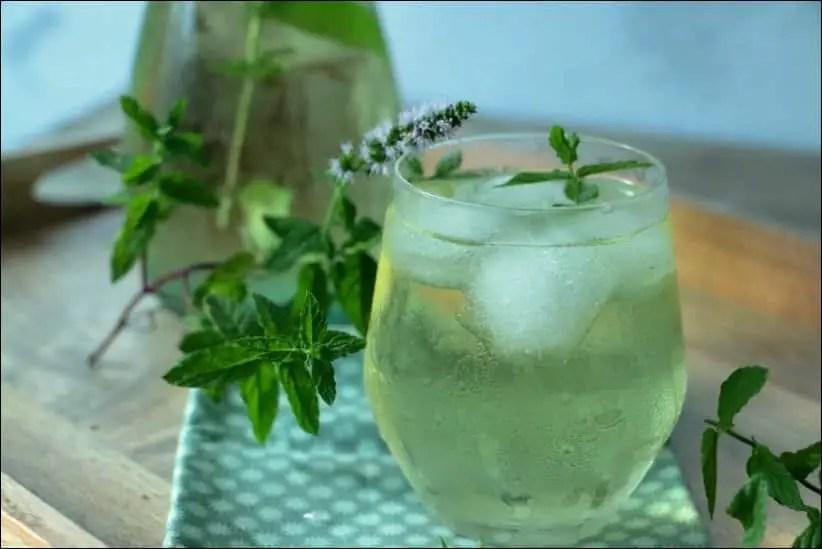 thé vert menthe glacé