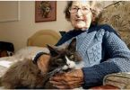 Cats Finds Previous Owner In Nursing Home!