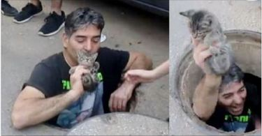 Heroic Man Jumps in Storm Drain to Save Kitty