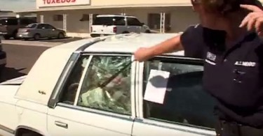 7 Dogs Trapped In Hot Car, Rescued By Police Officer Who Had To Smash The Window
