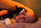 They Rescued 20-Year-Old Kitty From The Local Shelter, And He Had So Much Love Left To Give