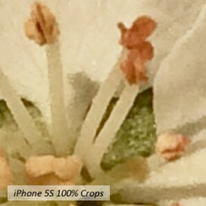 20160407 190016 iphone5s manual enhanced_Crop_Crop_DCE