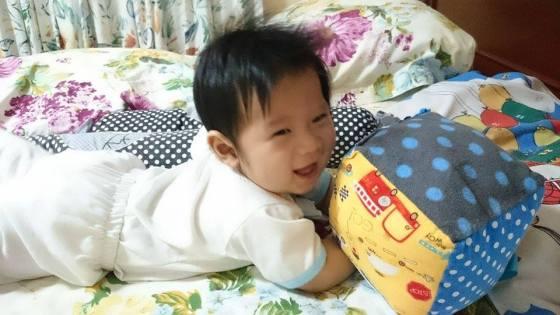 Tahi Kho Cuddle CUbes