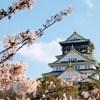 大阪城公園【和ーべきゅう】の日程や時間&予約方法と料金や必要な持ち物は?