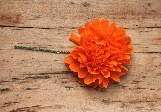 Mexican paper flowers step by step tutorial watch the video mexican paper flowers orange crepe paper craft mightylinksfo
