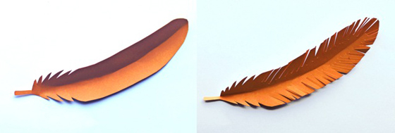 Easy DIY tutorial: Orange colored paper feather templates!