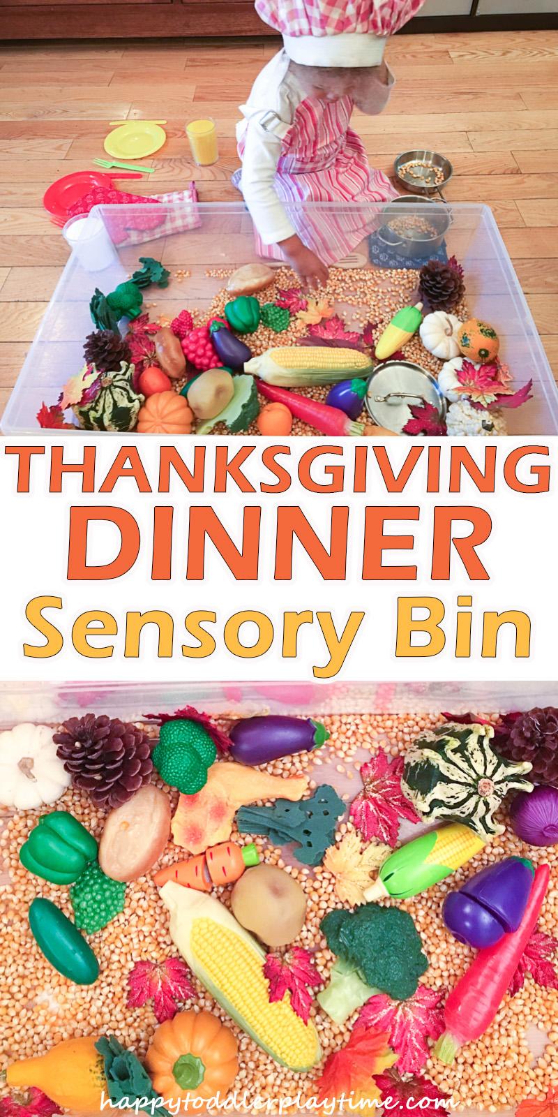 THANKSGIVING DINNER SENSORY BIN pin