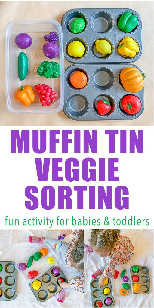 Sorting activity for babies and toddlers