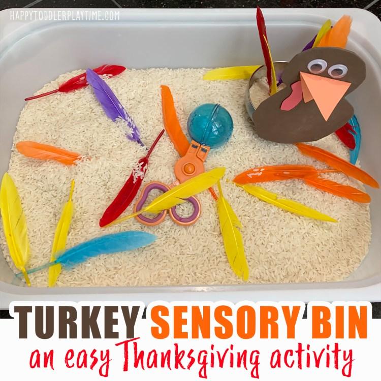turkey sensory bin