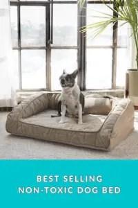 (L) Premium Indoor/Outdoor Pet Bed (Wild Animal)