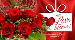 Happy Valentine Day 2016 Images For Whatsapp