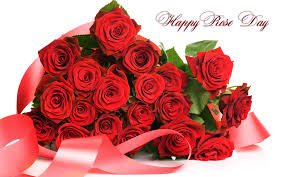 Happy Rose Day 2016 Real Gulab Images for Girlfriend