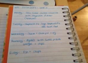 This week's plan