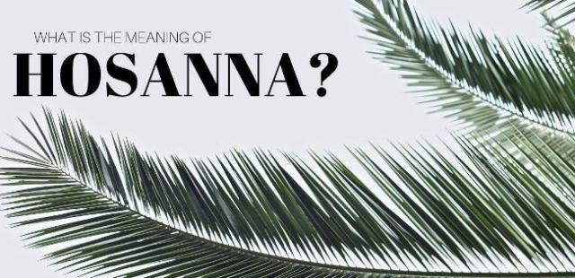 Hosanna Meaning and Definition