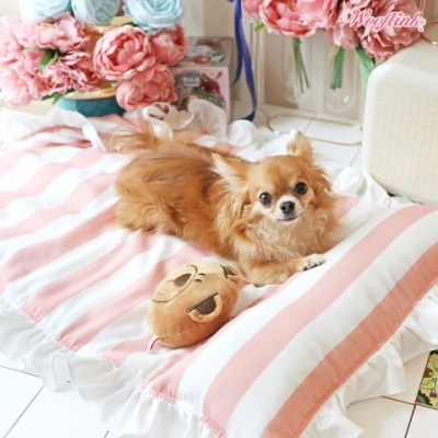 Nap time bed pink