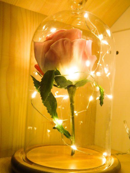 DSCN2400 450x600 - DIY La rose enchantée de la Belle et la Bête