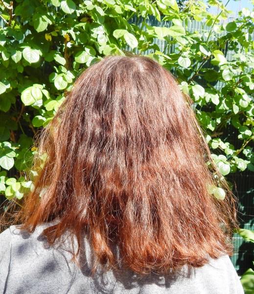 DSCN2510 519x600 - Test capillaire #2 : : La brosse lissante d'HairYoo