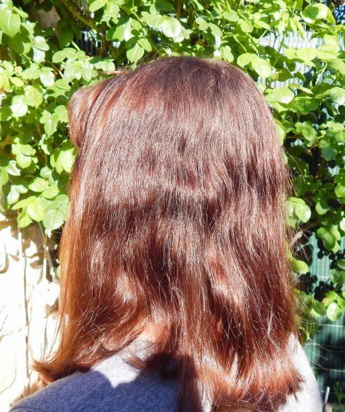 DSCN2517 503x600 - Test capillaire #2 : : La brosse lissante d'HairYoo