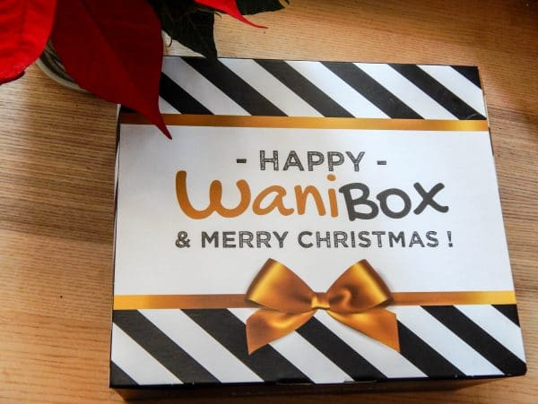 WaniBox For Dog Edition : Happy WaniBox & Merry Christmas