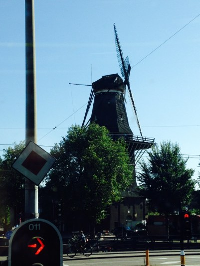 A windmill : Molen van Sloten, where you can get married :)