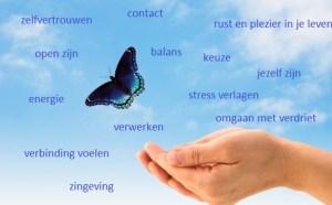 gevoel en verstand in balans haptotherapie