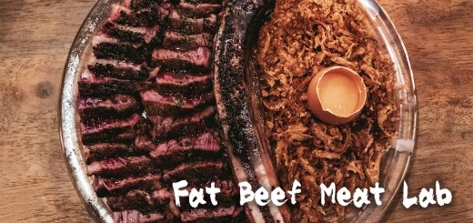 Fat Beef Meat Lab