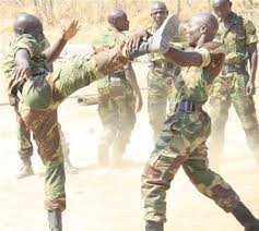 Zimbabwe soldiers sparring