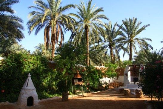 Maison Traditionnelle AKHAM - Ghardaïa 6