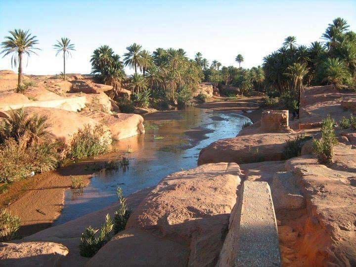 Wilaya de Naama | Les Wilayas d'Algérie sur le Guide & Annuaire des loisirs, évasion et tourisme Algerie