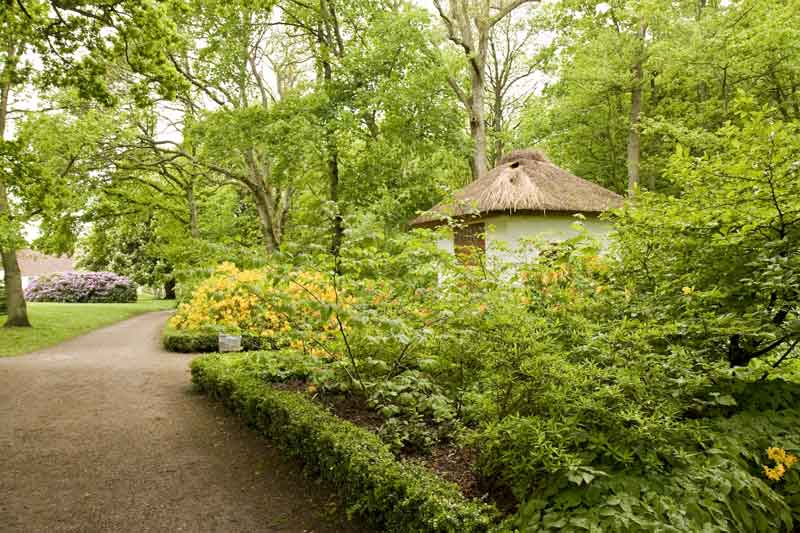 Bangsbo Botanic Garden - Harba