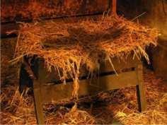 empty_manger