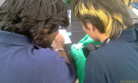 Raees and Ahyrton compare the color on the test strips to the standards to get a chemical reading