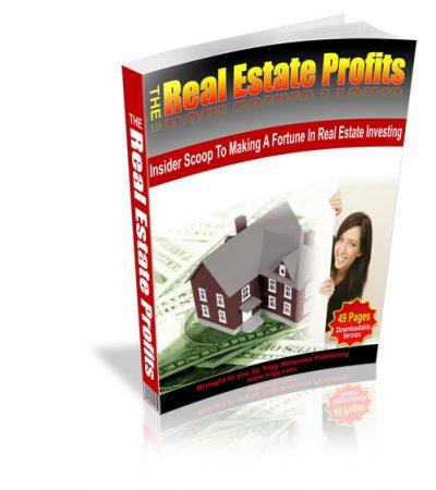 RealEstate500
