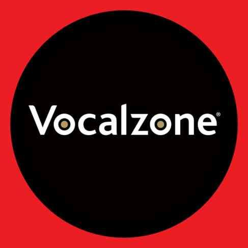Google-Vocalzone-Logo