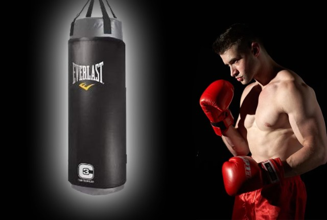 Everlast-punching-bag-2