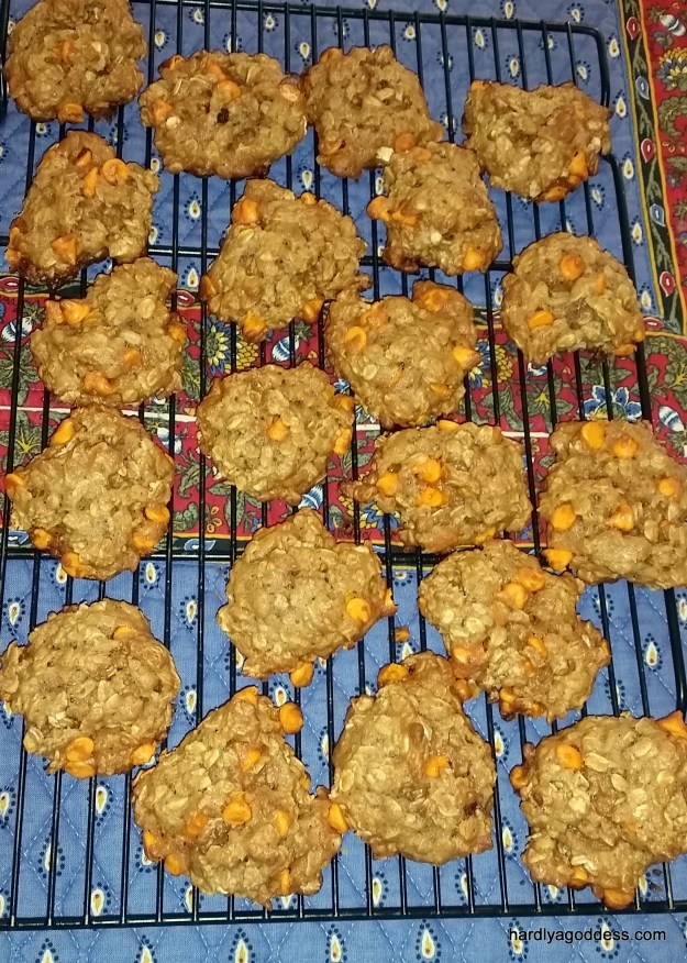 Pumpkin Oatmeal Pumpotchies Cookies