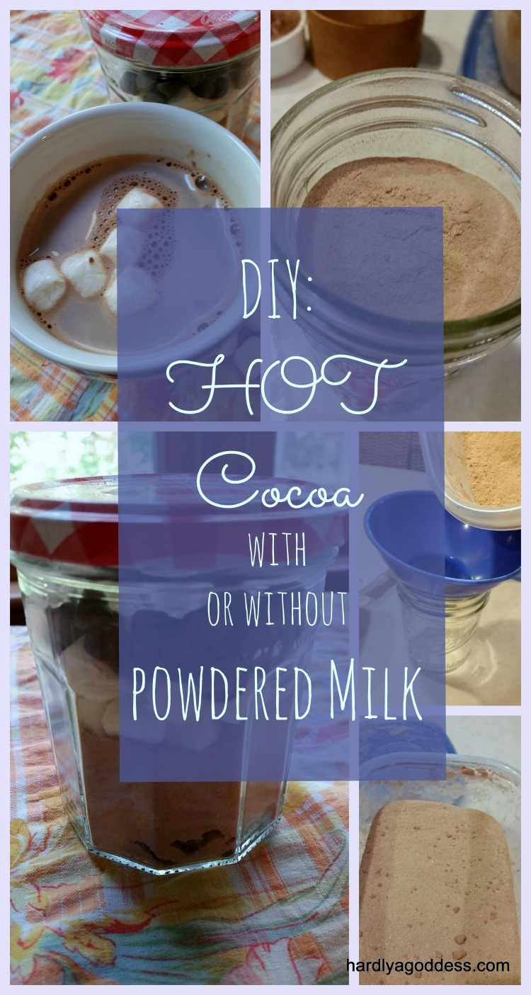Homemade DIY Hot Chocolate: With or Without Powdered Milk | Hardly ...